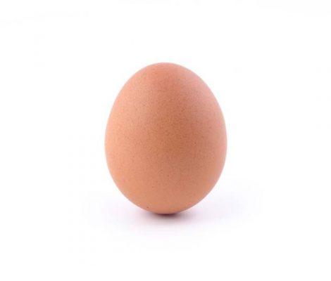 egg-insta